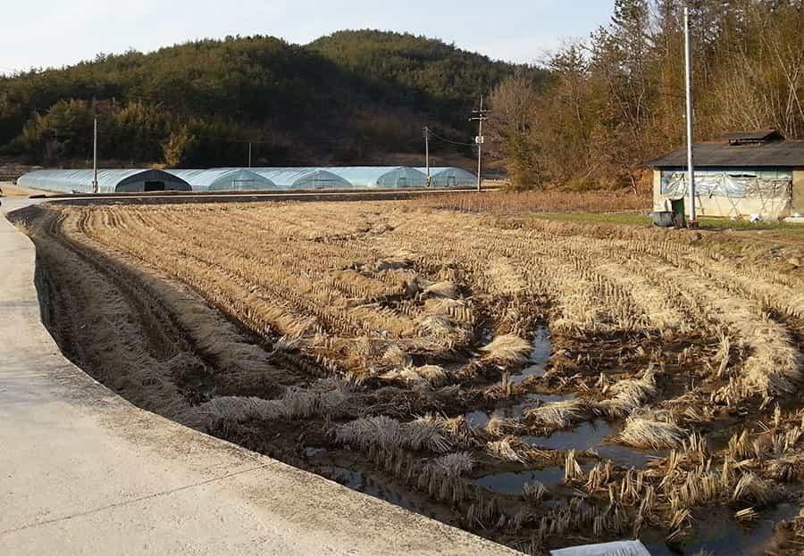 田畑の管理